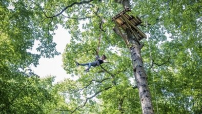 """L'accrobranche """"Jumping Forest"""" de Chenoise vous attend"""